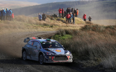 Anonimo times it right for the World Rally Championship